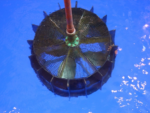 Offshore BOP Riser Recovery
